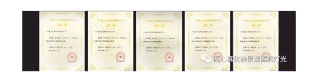 真优美景观照明荣获2017年度广东省守合同重信用企业称号 钽电容器